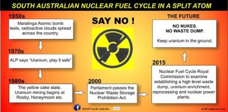 Diagram SA Nuclear Fuel Cycle